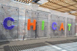 Artwork outside ChiCat.